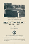 Brighton Beach, Wollongong by A. P. Fleming